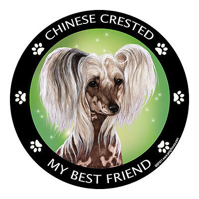 My Chinese Crested Is My Best Friend Dog Car Magnet