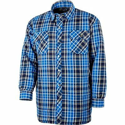 Chemise thermo