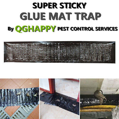 Mouse Glue Trap Strong Adhesive Black Glue Rat Mice Sticky Board for Restaurant