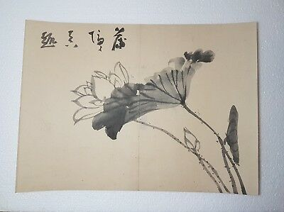 A Lovely 19th Century Meiji period Artists Sumi-e Ink Painting Of Lotus Flowers