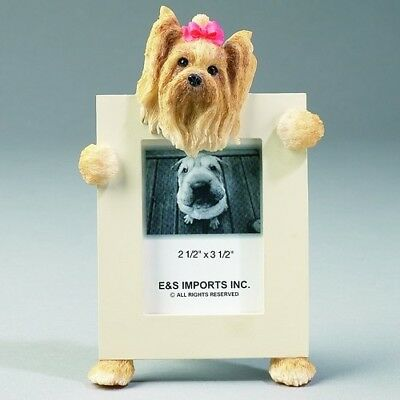 Yorkshire Terrier Yorkie Dog Picture Photo Frame
