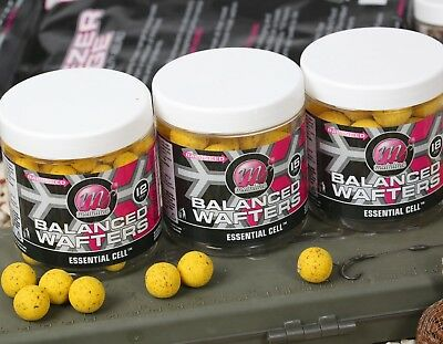 Supply Mainline Carp Fishing Balanced Wafters All Sizes Sporting Goods