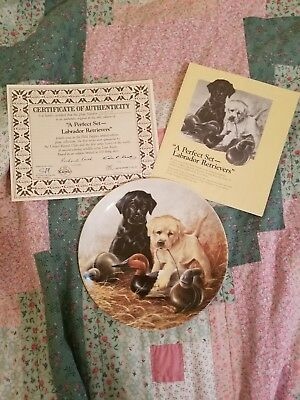 1988 Labrador retriever Puppy Plate by Lynn kaatz and Edwin m Knowles China