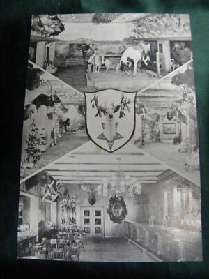 1960's Texas Postcard Buckhorn Hall of Horns Lone Star Brewing Co San Antonio Tx