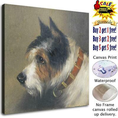 """12""""x12""""Dog Poster HD Canvas prints Painting Home Decor Picture Room Wall art"""