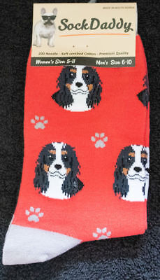 Cavalier King Charles Tri Dog Breed Lightweight Stretch Cotton Adult Socks
