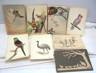 Vintage Hand Drawn & Colored Bird Post Cards 8 Different