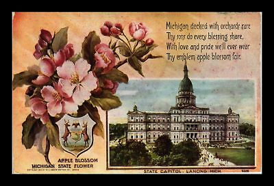 Dr Jim Stamps Us Flowers Capitol Building Michigan Topical View Postcard