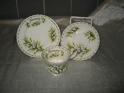 Royal Albert Flower of the Month Series Trio Snowdrops January - Factory Seconds