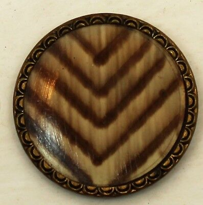 Antique Victorian Celluloid Set In Metal Chevron Patterned Button-Large