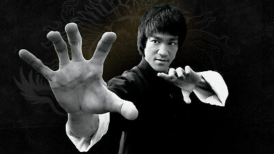 Bruce Lee: Kung Fu Poster 24x36 inch rolled wall poster