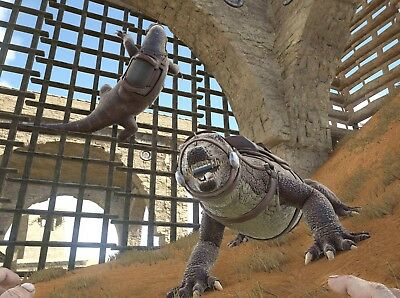 ARK SURVIVAL EVOLVED Xbox One PVE Official Unleveled Lvl 145