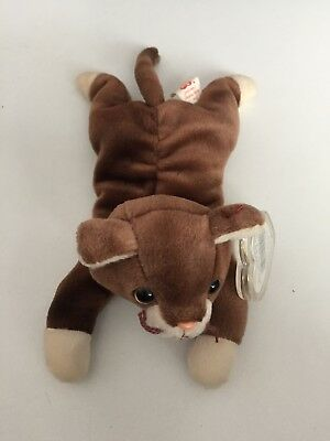 The Beanie Babies Collection Flugsaurier Swoop Stofftiere