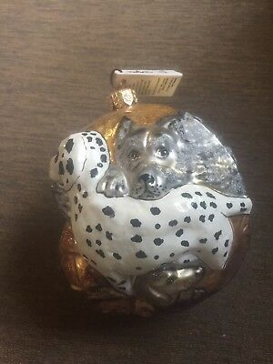 Slavic Treasures Ornament Puppy Ball Glass Poland With Tag New Dogs