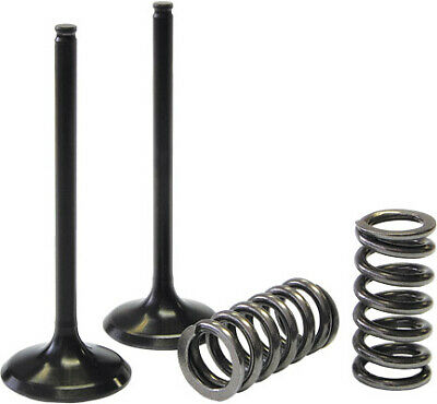 Pro X 28.SES2440-1 Steel Valves and Spring Kits