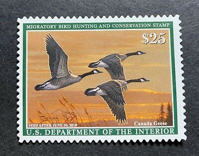 WTDstamps - #RW84 2017 - US Federal Duck Stamp - NG