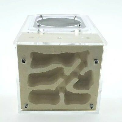 Acrylic Plaster Combo Ant Nest Housing Ant Farm Formicarium For Ant Colony