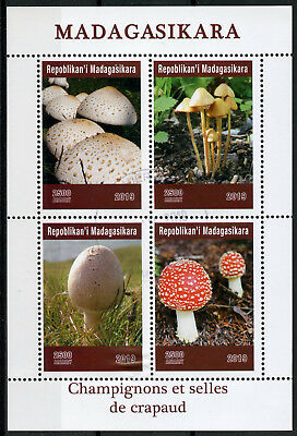 Madagascar 2019 CTO Mushrooms Toadstools Fly Agaric 4v M/S Fungi Nature Stamps