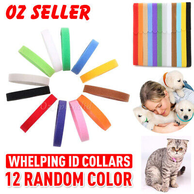 12X Kitten Pet Puppy Whelping Soft ID Collars Tag Adjustable Colorful Neck Strap