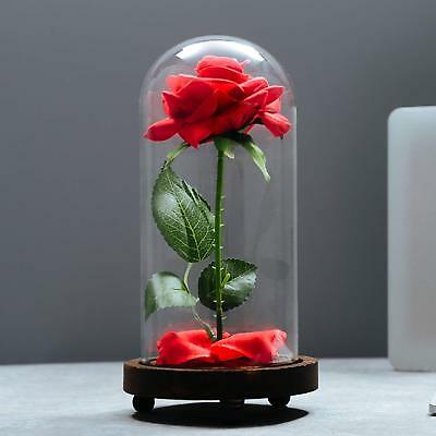 Valentines Day Gift For Friend Him Her Wife Husband Mom Eternal Real Rose Best Romantic Anniversary Birthday