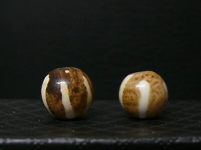 (eL127c) Burma 2 Old round PUMTEK beads made of fossilized palm wood