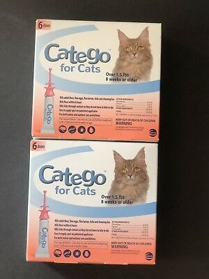 CATEGO Flea Treatment for Cats Over 1.5 Lbs 8 weka or older