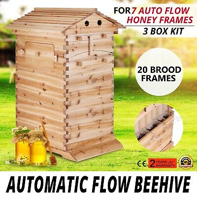 Bee Hive 3 Layers For 7 Auto Flow Honey Frames Beehive Harvesting Beehive Box