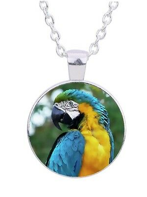 "Blue & Yellow Parrot 20"" Silver Tone Chain Glass Cabochon Pendant Necklace"