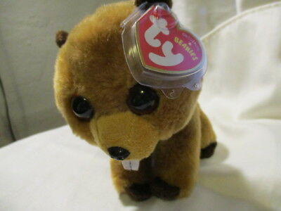 2c3770d9ac8 TY RICHIE THE Beaver Beanie Babies Stuffed Small 6