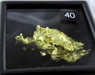 1.7  grams of crystallized gold Round Mountain Gold Mine Nevada USA list $750.00