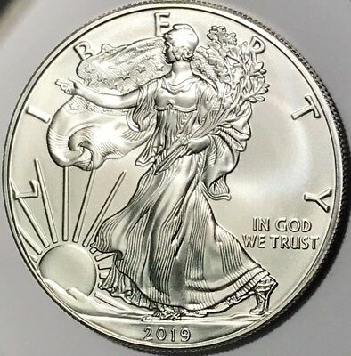 2019 Silver American Eagle silver dollar uncirculated 1 oz .999 elite pre-Sale