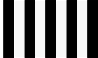 Queens Park Black And White Striped 5ft x 3ft (150cm x 90cm) Flag