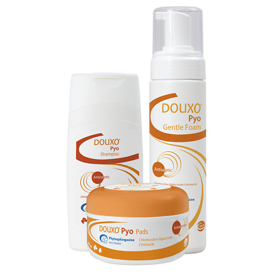 Douxo Pyo Antiseptic Shampoo, Mousse & Pads - Whole Range - Best Price!!