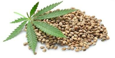 Canabis Sativa SEEDS edible organic whole hulled hemp seed Free shipping