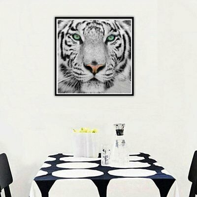 White Tiger 9533 Diamond Painting Embroidery Cross Stitch Diamond Picture DN