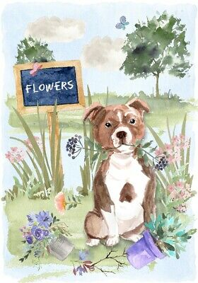 "Staffordshire Bull Terrier Dog (4"" x 6"") Blank Card/ Notelet Design By Starprint"