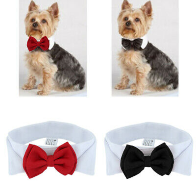 Dog Cat Pet Puppy Teddy Toy Adjustable Bow Tie Necktie Collar Party Clothes