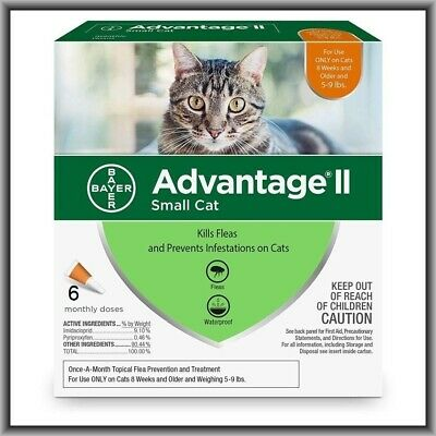 Advantage II Flea Treatment for SMALL Cats UNDER 9 lbs -6 monthly doses SEE NOTE