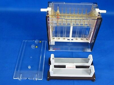 Hoefer Scientific Instruments Vertical Gel Electrophoresis Unit SE600 w/ Stands