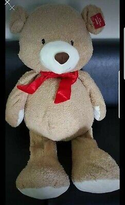 Valentines Large Teddy Bear with Tag