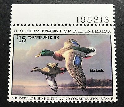 WTDstamps - #RW62 1995 - US Federal Duck Stamp - Mint OG NH