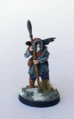 Well Painted - Odin Viking god or Priest Dark Ages Saga Footsore 28mm D&D