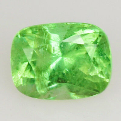 0.50 Ct Extremly Rare RICH Chrome GREEN 100% NATURAL KORNERUPINE @ See Video !!!