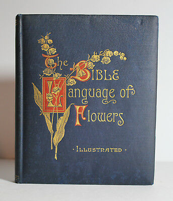 Antique 1912 BIBLE LANGUAGE OF FLOWERS Christian Verse Religion Love Advice Art