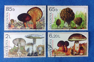 MOLDOVA Europe 2007 Set Of Used Stamps Endangered Wild Muschrooms 433