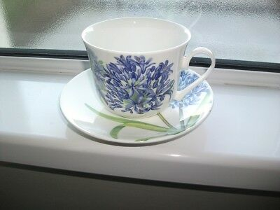 ROY KIRKHAM LARGE CUP AND SAUCER - Agapanthus