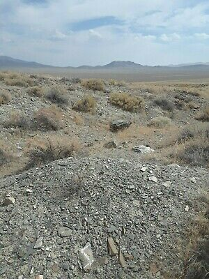 Gold Placer Mining Claim - Nevada - 20 Acres