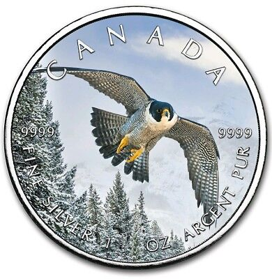 2019 1 Oz Silver $5 Canadian Wildlife PEREGRINE FALCON MAPLE LEAF Coin..
