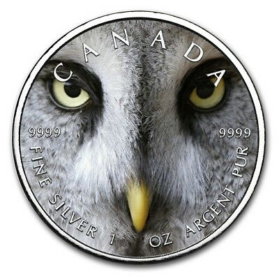 2019 1 Oz Silver $5 Canadian Wildlife SNOW OWL MAPLE LEAF Coin..