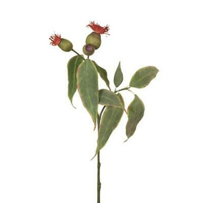 Artificial Silk Australian Native Flowering  Eucalyptus Greenery Pod Spray - ...